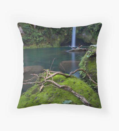 Omanawa timber spider Throw Pillow
