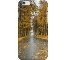 road iPhone Case/Skin
