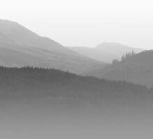 Scotch Mist by Lynn Bolt
