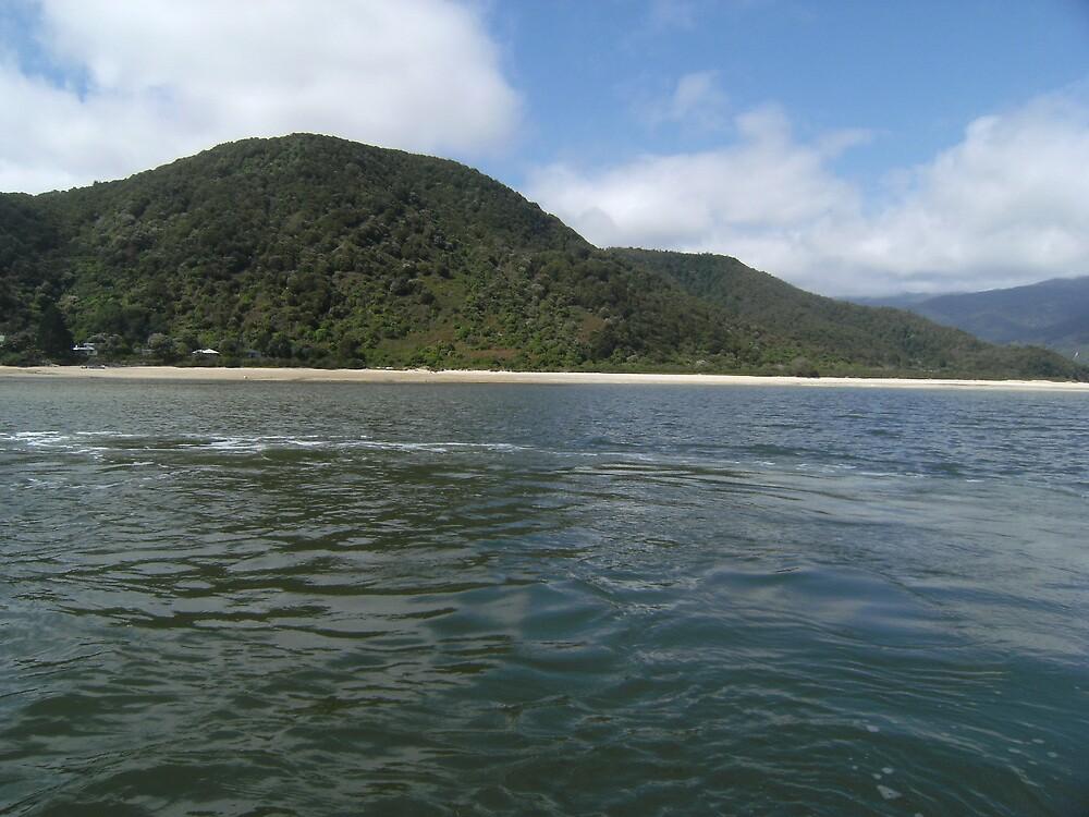 Abel Tasman Coast 2 by cadellin
