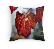 Autumn Leaves... only a few Red ones left Throw Pillow