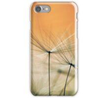 Apricot 'chutes iPhone Case/Skin