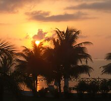 SunRise on the Palms by HowardWalsh
