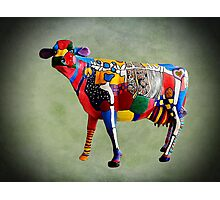 Cow Parades at School Photographic Print
