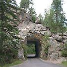 Custer State Park tunnel - South Dakota by Kent Burton
