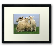 "My spring bed 11!  ""Give us a kiss"" Framed Print"