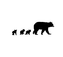 Mama Bear and her Cubs.  by Nathanael Mortensen