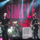 Simple plan, get your heart on! tour by earthtorenee