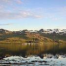 Grundarfjörður by Ólafur Már Sigurðsson