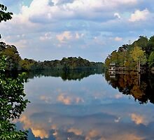 Fall Reflections Along The Inter-Coastal Water Way by Kathy Baccari