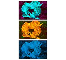 Abstract Sandwich Photographic Print