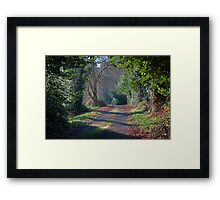 Green Leafy Lane Framed Print