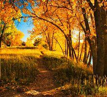 October's Light by John  De Bord Photography