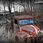 """""""Remnants of the Good Ol' Days"""" by Gail Jones"""