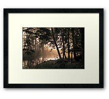 Morning Glade Framed Print