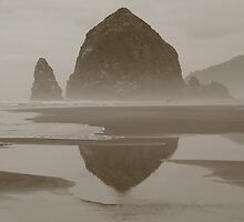 Cloudy Cannon Beach by Randy Richards