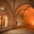 King D. Dinis Cloister by terezadelpilar ~ art & architecture