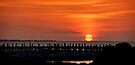 Alabama Sunset by Sandy Keeton