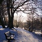 Hammonds pond, Winter by LeightonM1