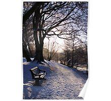 Hammonds pond, Winter Poster