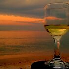 Happy hour at Woodgate Beach Qld by myraj