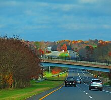 On The Road by Eileen McVey