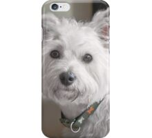 Terrier Puppy iPhone Case/Skin