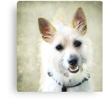 """""""My Name Is Teddy """" Canvas Print"""
