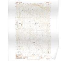 USGS Topo Map Washington State WA The Cottonwoods 244246 1984 24000 Poster