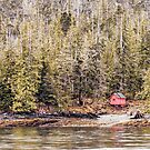 Red Cabin in Alaska by dbvirago