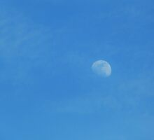 Afternoon Moon - 2pm, May 31st, 2012 by Scott Mitchell