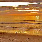 Moonlight Beach by ChrissieBee