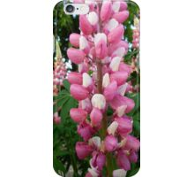 Lupin iPhone case iPhone Case/Skin