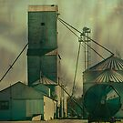 Grain Elevator at Ware Illinois by barnsis