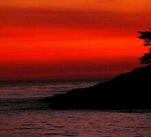 #1113  Sunset In Santa Cruz by MyInnereyeMike