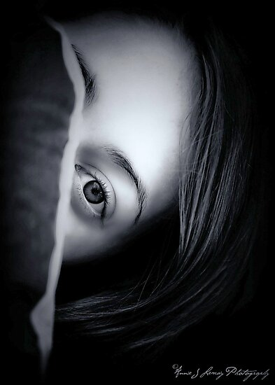 The Eyes have it by Annie Lemay  Photography