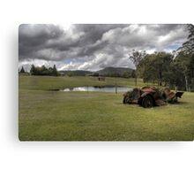 Rusty on the Farm Canvas Print