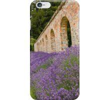 Lavender walled garden. iPhone Case/Skin