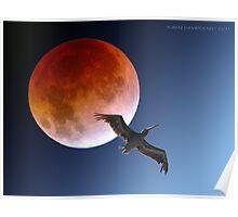 Pelican Eclipse  Poster