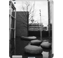 Urban Rocks  iPad Case/Skin