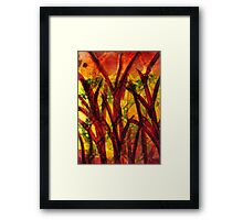 The Land of Redwoods and Gold Framed Print