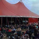 Wickham Festival 2011 by cadellin