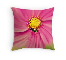 Hoverfly in the Pink Throw Pillow