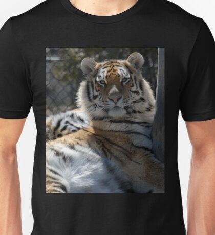 Tiger, Tiger in  a Zoo. T-Shirt