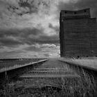 Grain Elevator 1 by Miles Glynn