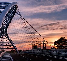 The Bridge of Science by Marco Romani