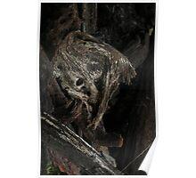 Raw Bog Wood Knot Image Poster