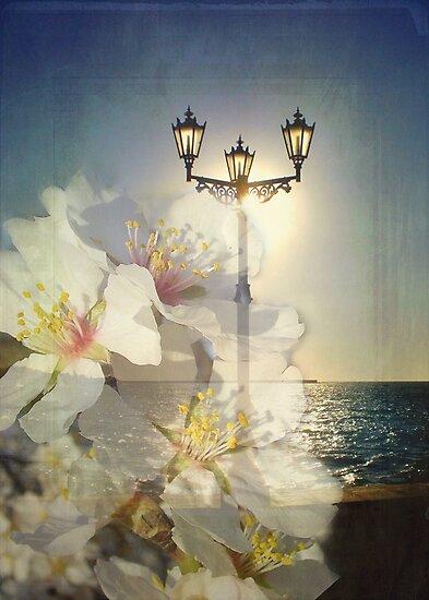 Spring evening by kindangel