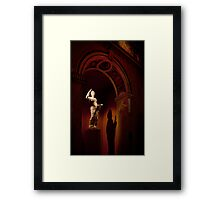 Drama  in the museum Framed Print