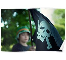 In search of the Jolly Roger Poster